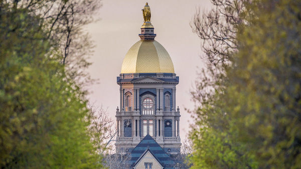 Notre Dame endowment pool at $11.8 billion for fiscal year 2017